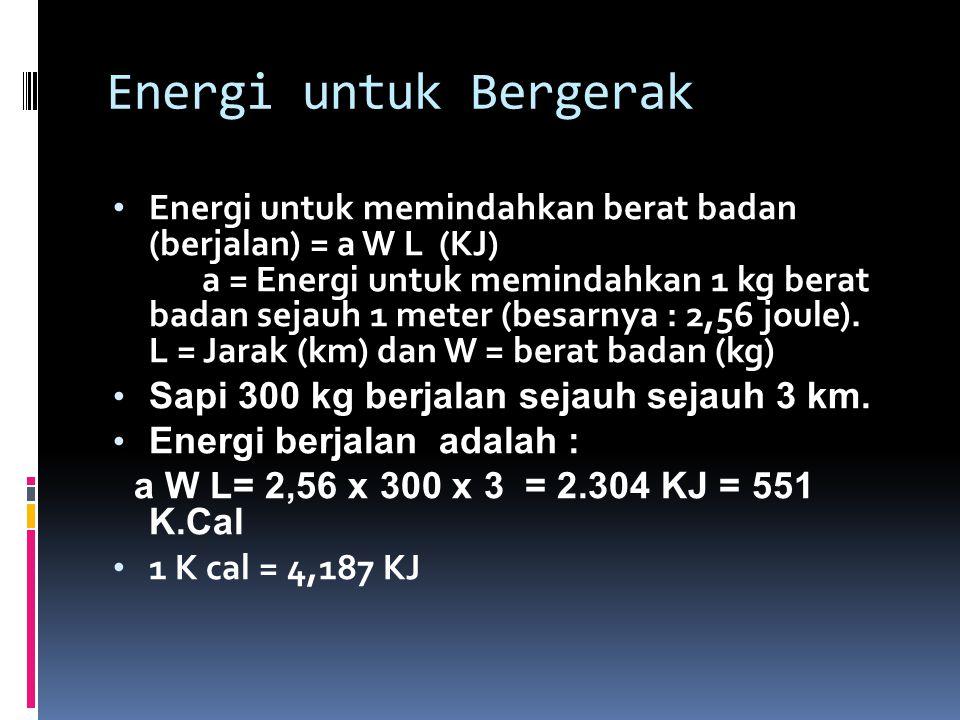 Energi untuk Bergerak Energi untuk memindahkan berat badan (berjalan) = a W L (KJ) a = Energi untuk memindahkan 1 kg berat badan sejauh 1 meter (besarnya : 2,56 joule).