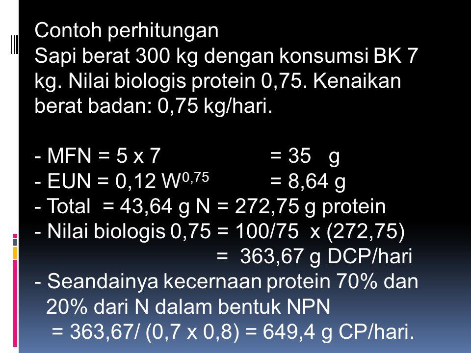 Contoh perhitungan Sapi berat 300 kg dengan konsumsi BK 7 kg. Nilai biologis protein 0,75. Kenaikan berat badan: 0,75 kg/hari. - MFN = 5 x 7 = 35 g -