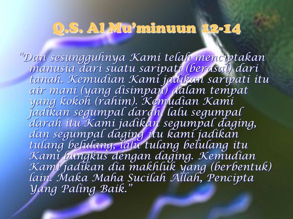 "Q.S. Al Mu'minuun 12-14 ""Dan sesungguhnya Kami telah menciptakan manusia dari suatu saripati (berasal) dari tanah. Kemudian Kami jadikan saripati itu"