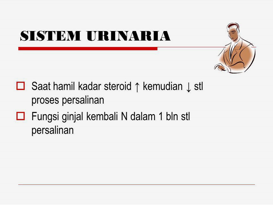 ABDOMEN  6 minggu dinding abdomen kembali ke keadaan sebelum hamil DIASTASIS RECTI ABDOMINIS Kulit kembali elastis & striae (+)