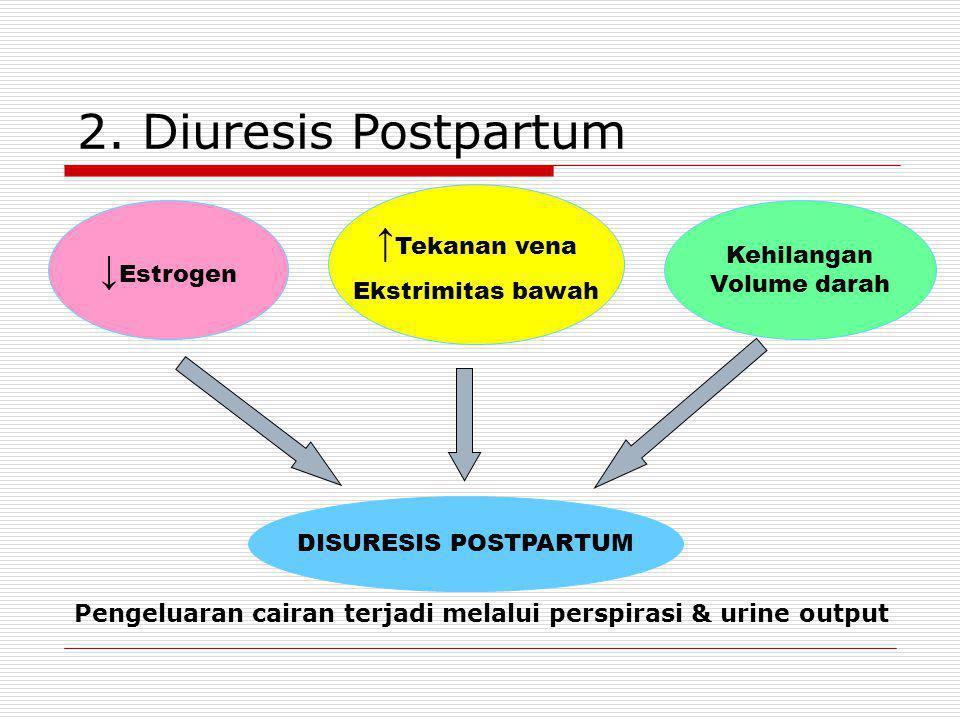 1. Komponen Urine  Laktosuria pd wanita menyusui  ↑ BUN  Proteinuria ringan selama 1-2 hari setelah melahirkan  Ketonuria pd kelahiran tanpa kompl