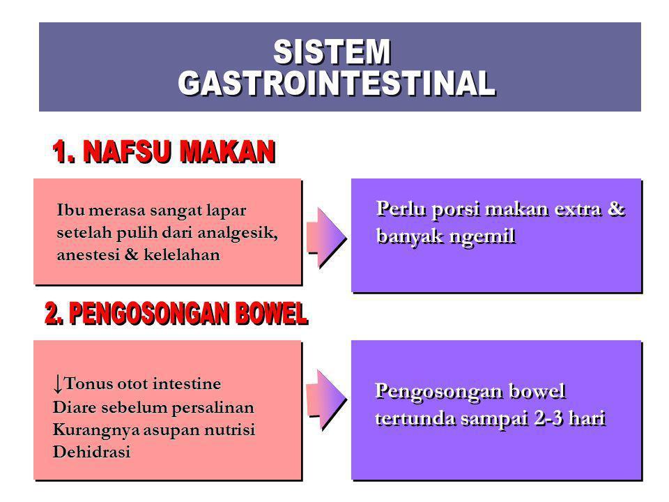3. Uretra & Kandung Kemih  Trauma uretra & kandung kemih dapat terjadi selama proses melahirkan  Trauma melahirkan, ↑ kapasitas kandung kemih & efek