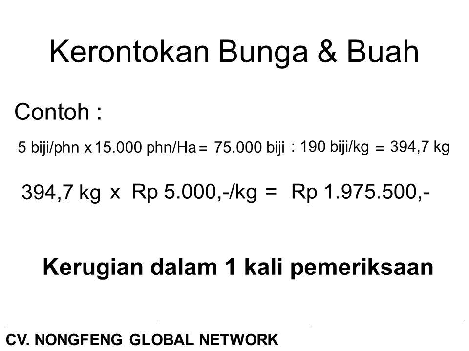 Kerontokan Bunga & Buah Contoh : 5 biji/phnx15.000 phn/Ha75.000 biji = :190 biji/kg xRp 5.000,-/kg=Rp 1.975.500,- Kerugian dalam 1 kali pemeriksaan =