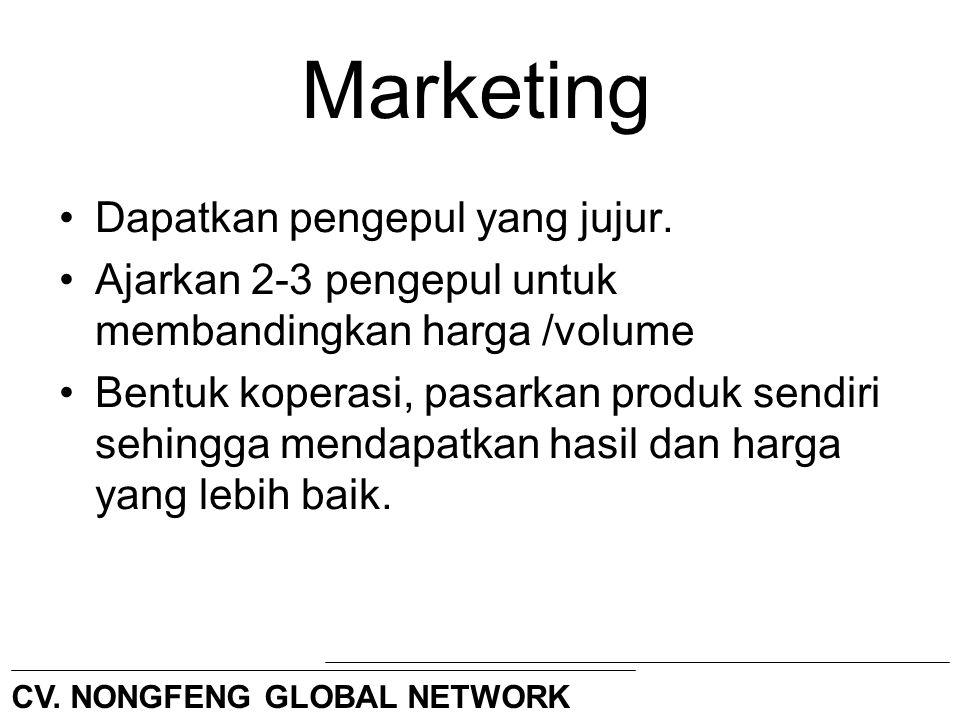 Marketing Dapatkan pengepul yang jujur. Ajarkan 2-3 pengepul untuk membandingkan harga /volume Bentuk koperasi, pasarkan produk sendiri sehingga menda