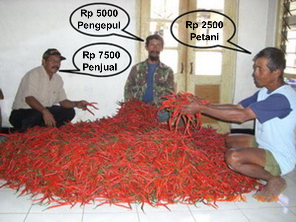 Rp. 2.500,- Per kg Rp. 5.000,- Per kg Rp. 7.500,- Per kg Rp 2500 Petani Rp 5000 Pengepul Rp 7500 Penjual