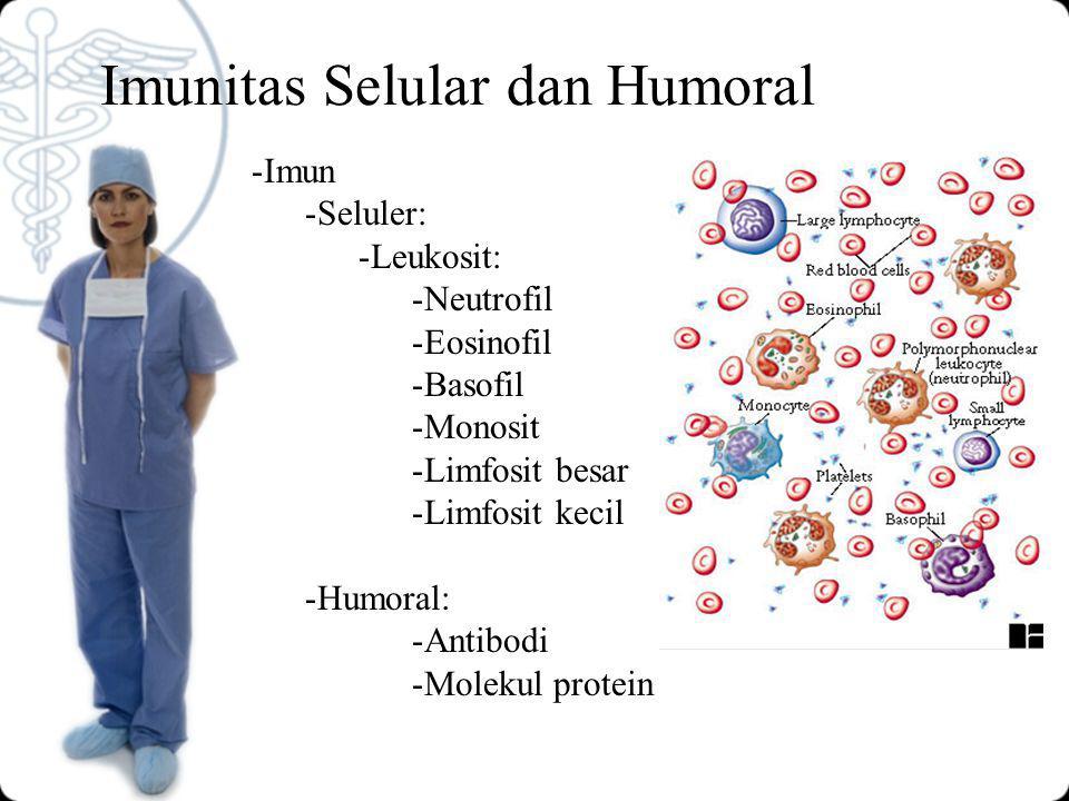 Imunitas Selular dan Humoral -Imun -Seluler: -Leukosit: -Neutrofil -Eosinofil -Basofil -Monosit -Limfosit besar -Limfosit kecil -Humoral: -Antibodi -Molekul protein