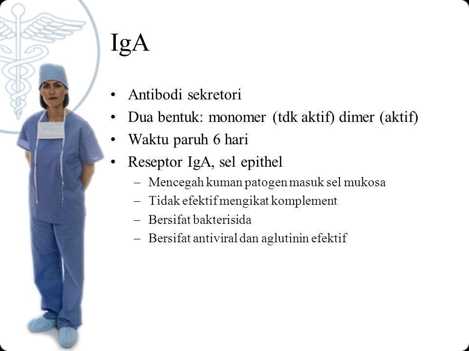IgA Antibodi sekretori Dua bentuk: monomer (tdk aktif) dimer (aktif) Waktu paruh 6 hari Reseptor IgA, sel epithel –Mencegah kuman patogen masuk sel mukosa –Tidak efektif mengikat komplement –Bersifat bakterisida –Bersifat antiviral dan aglutinin efektif