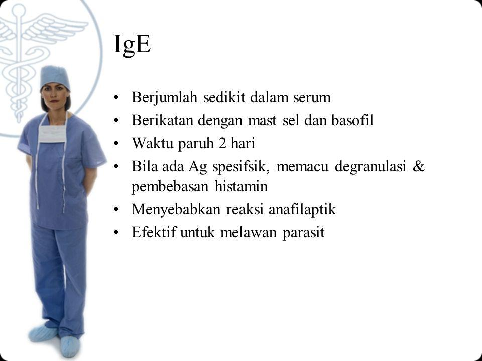 IgE Berjumlah sedikit dalam serum Berikatan dengan mast sel dan basofil Waktu paruh 2 hari Bila ada Ag spesifsik, memacu degranulasi & pembebasan histamin Menyebabkan reaksi anafilaptik Efektif untuk melawan parasit