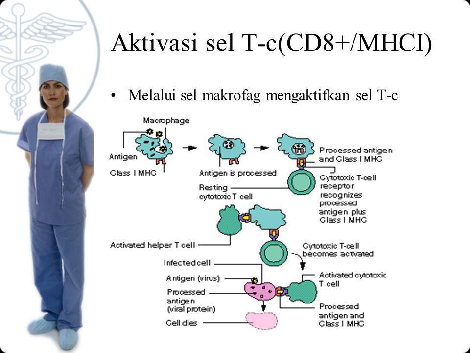 Aktivasi sel T-c(CD8+/MHCI) Melalui sel makrofag mengaktifkan sel T-c