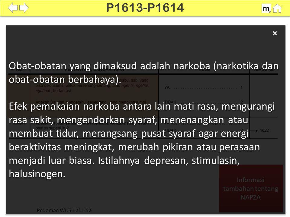 Informasi tambahan tentang NAPZA Informasi tambahan tentang NAPZA Obat-obatan yang dimaksud adalah narkoba (narkotika dan obat-obatan berbahaya). Efek