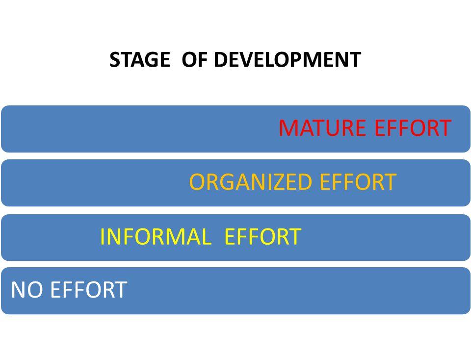 STAGE OF DEVELOPMENT MATURE EFFORTORGANIZED EFFORTINFORMAL EFFORTNO EFFORT