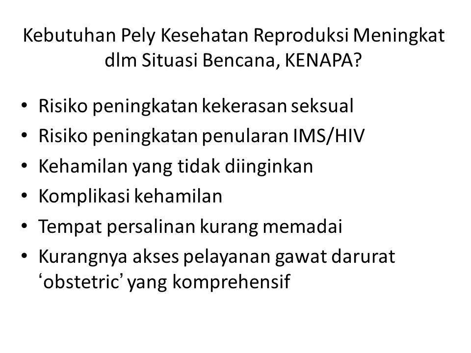 Bukan MISP, tetapi Penting Keluarga Berencana Pengobatan IMS Kebutuhan Menstruasi