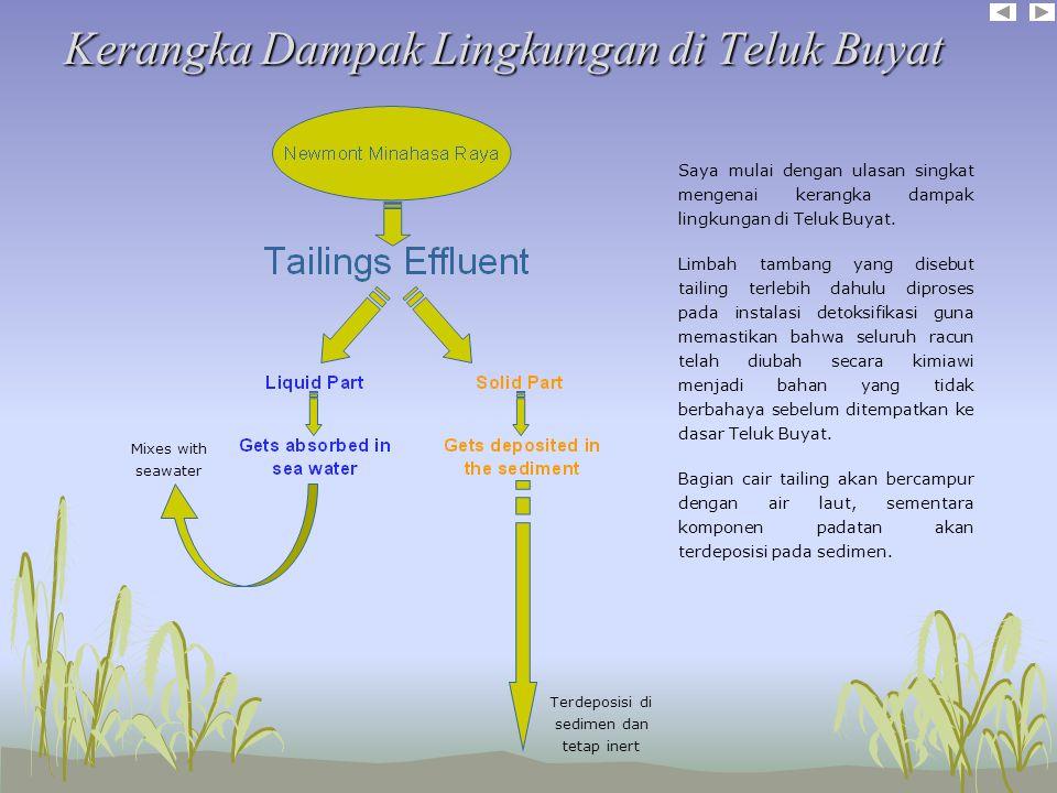 Kerangka Dampak Lingkungan di Teluk Buyat Saya mulai dengan ulasan singkat mengenai kerangka dampak lingkungan di Teluk Buyat.