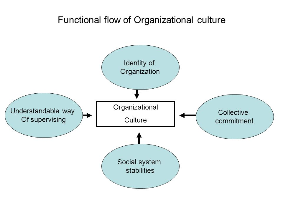 Functional flow of Organizational culture Organizational Culture Identity of Organization Social system stabilities Collective commitment Understandable way Of supervising
