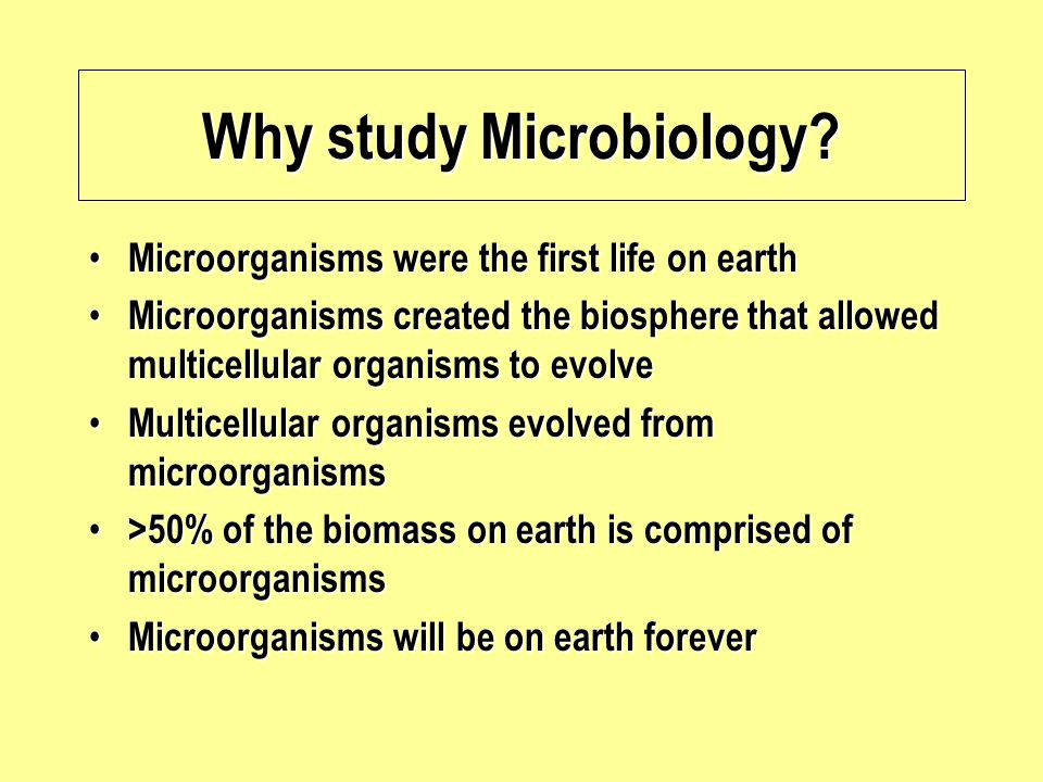 18/12/201423Introduction to Microbiology