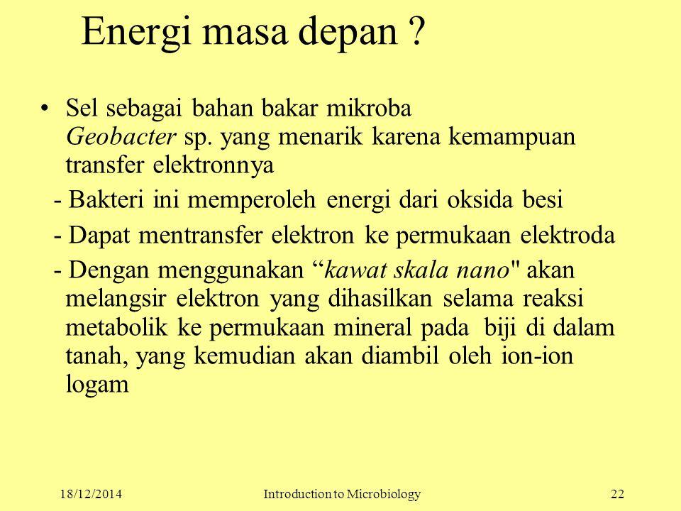 Energi masa depan . Sel sebagai bahan bakar mikroba Geobacter sp.