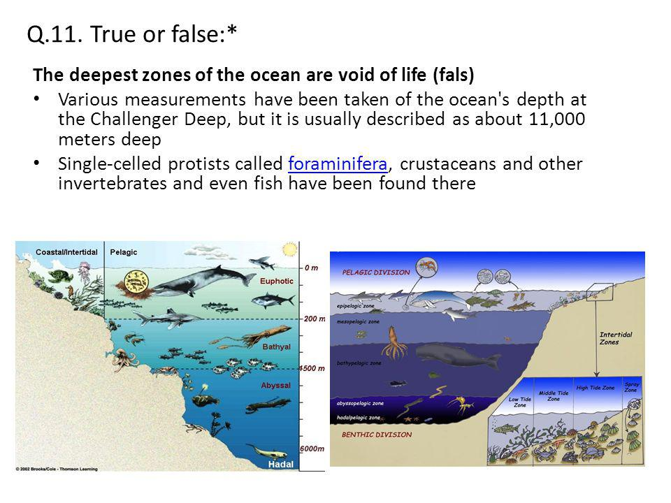 Q.11. True or false:* The deepest zones of the ocean are void of life (fals) Various measurements have been taken of the ocean's depth at the Challeng