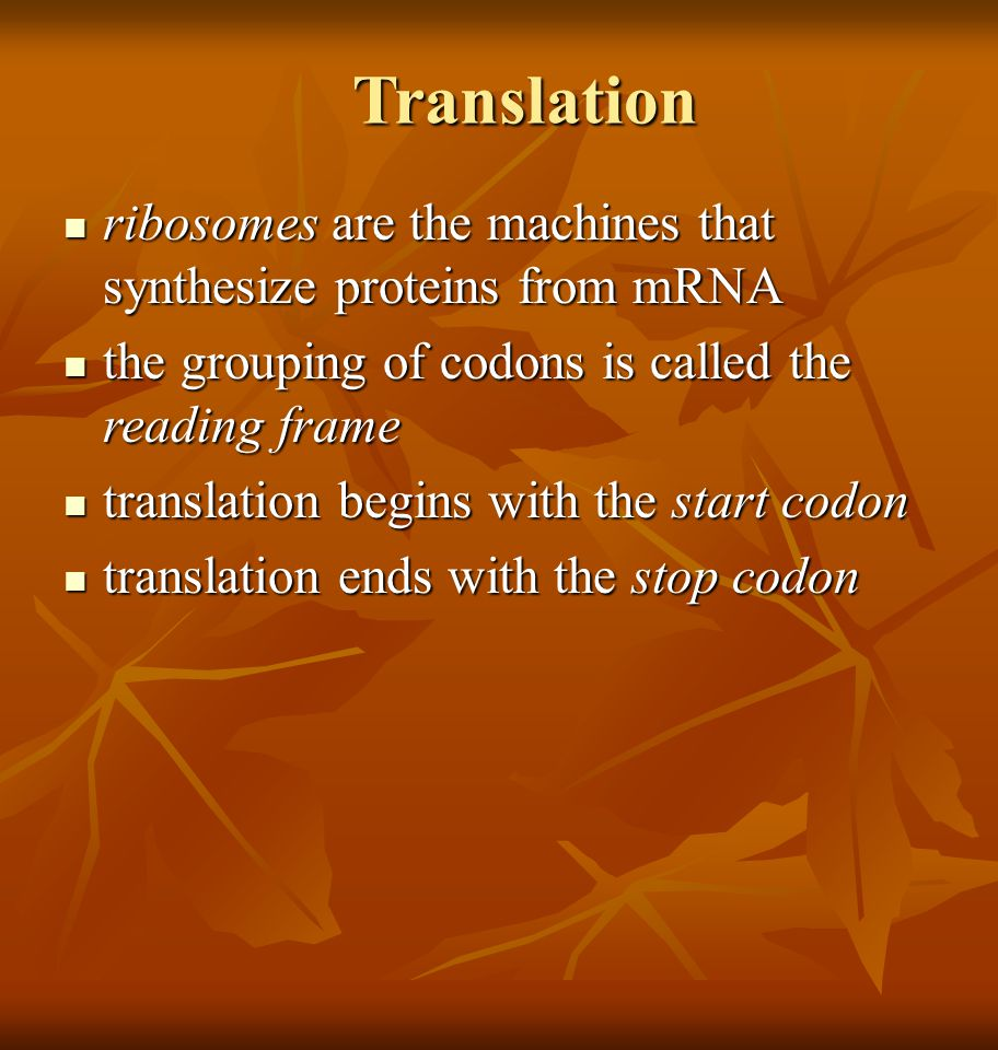 Translation ribosomes are the machines that synthesize proteins from mRNA ribosomes are the machines that synthesize proteins from mRNA the grouping of codons is called the reading frame the grouping of codons is called the reading frame translation begins with the start codon translation begins with the start codon translation ends with the stop codon translation ends with the stop codon