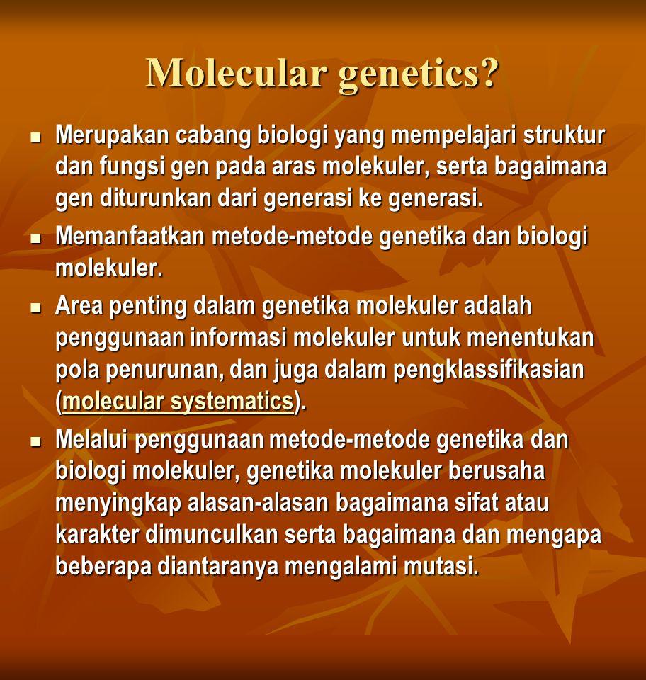 Molecular genetics? Merupakan cabang biologi yang mempelajari struktur dan fungsi gen pada aras molekuler, serta bagaimana gen diturunkan dari generas