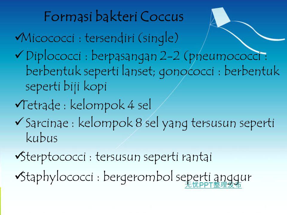无忧 PPT 整理发布 Formasi bakteri Coccus Micococci : tersendiri (single) Diplococci : berpasangan 2-2 (pneumococci : berbentuk seperti lanset; gonococci : b