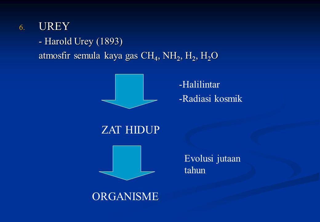 6. UREY - Harold Urey (1893) atmosfir semula kaya gas CH 4, NH 2, H 2, H 2 O -Halilintar -Radiasi kosmik Evolusi jutaan tahun ZAT HIDUP ORGANISME