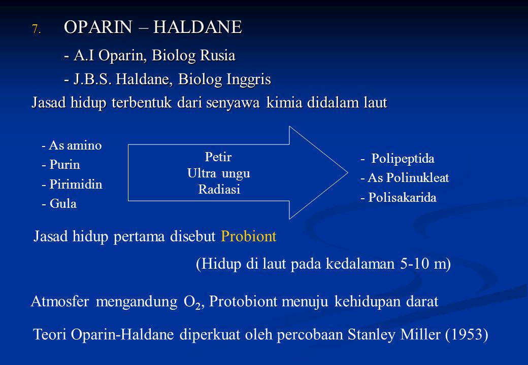 7. OPARIN – HALDANE - A.I Oparin, Biolog Rusia - J.B.S. Haldane, Biolog Inggris Jasad hidup terbentuk dari senyawa kimia didalam laut - As amino - Pur