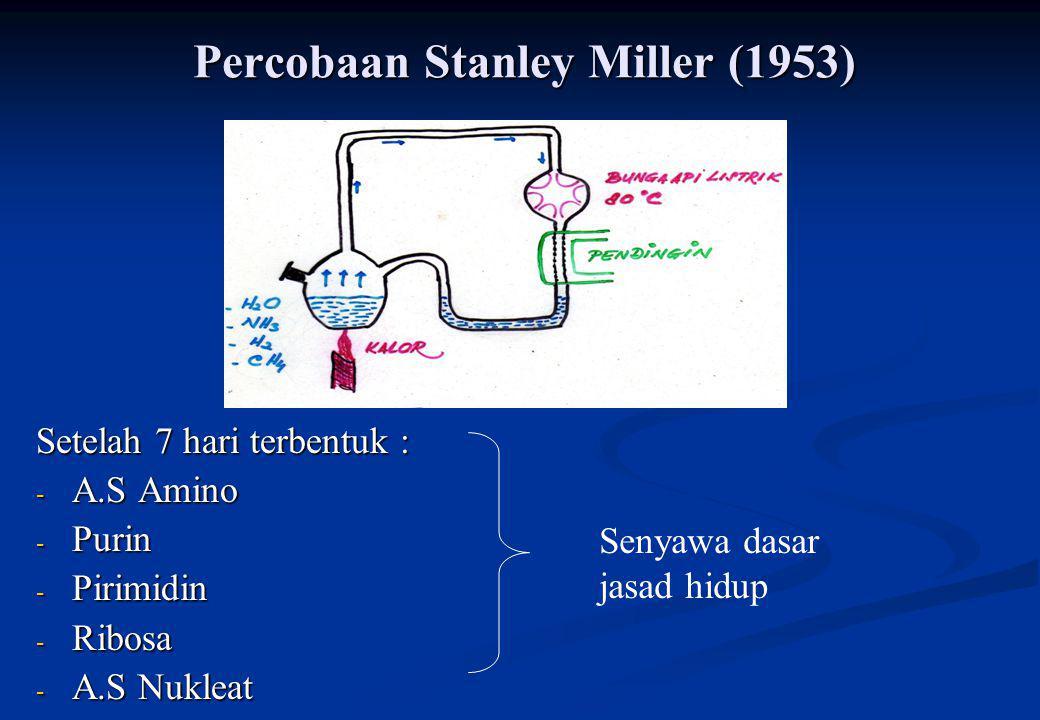 Percobaan Stanley Miller (1953) Setelah 7 hari terbentuk : - A.S Amino - Purin - Pirimidin - Ribosa - A.S Nukleat Senyawa dasar jasad hidup