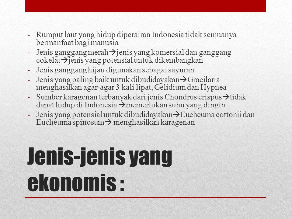 Jenis-jenis yang ekonomis : -Rumput laut yang hidup diperairan Indonesia tidak semuanya bermanfaat bagi manusia -Jenis ganggang merah  jenis yang kom