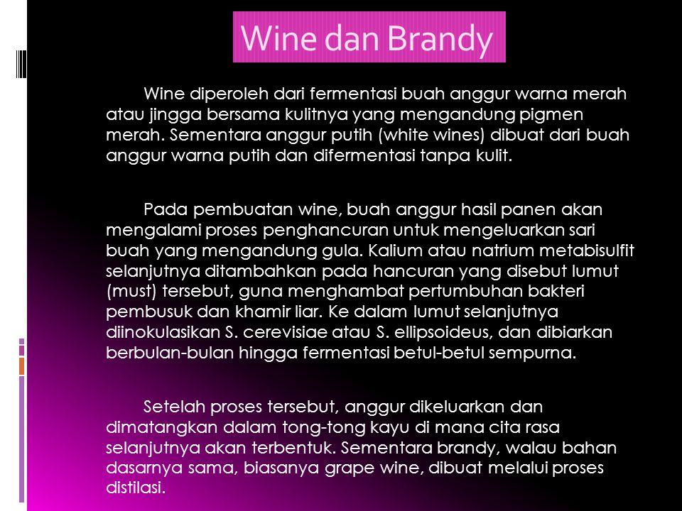 Wine dan Brandy Wine diperoleh dari fermentasi buah anggur warna merah atau jingga bersama kulitnya yang mengandung pigmen merah. Sementara anggur put