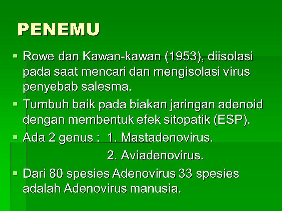 PENEMU  Rowe dan Kawan-kawan (1953), diisolasi pada saat mencari dan mengisolasi virus penyebab salesma.  Tumbuh baik pada biakan jaringan adenoid d