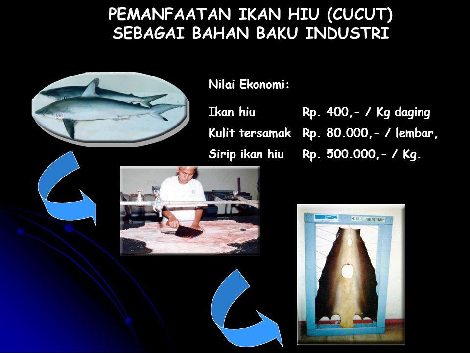 PEMANFAATAN IKAN HIU (CUCUT) SEBAGAI BAHAN BAKU INDUSTRI Ikan hiu Rp. 400,- / Kg daging Kulit tersamak Rp. 80.000,- / lembar, Sirip ikan hiu Rp. 500.0
