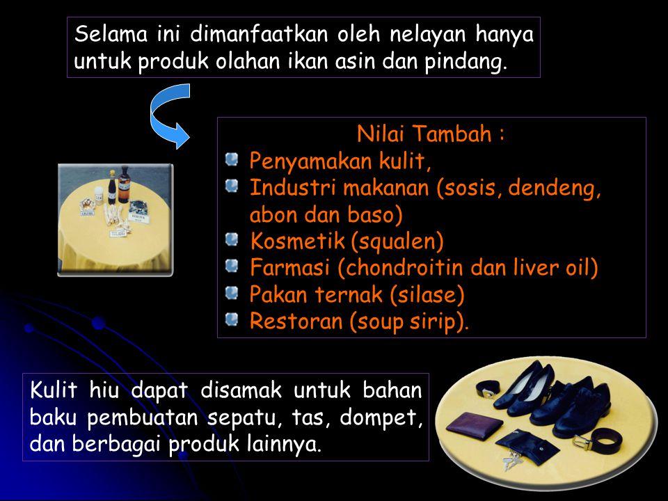 Kulit hiu dapat disamak untuk bahan baku pembuatan sepatu, tas, dompet, dan berbagai produk lainnya. Selama ini dimanfaatkan oleh nelayan hanya untuk