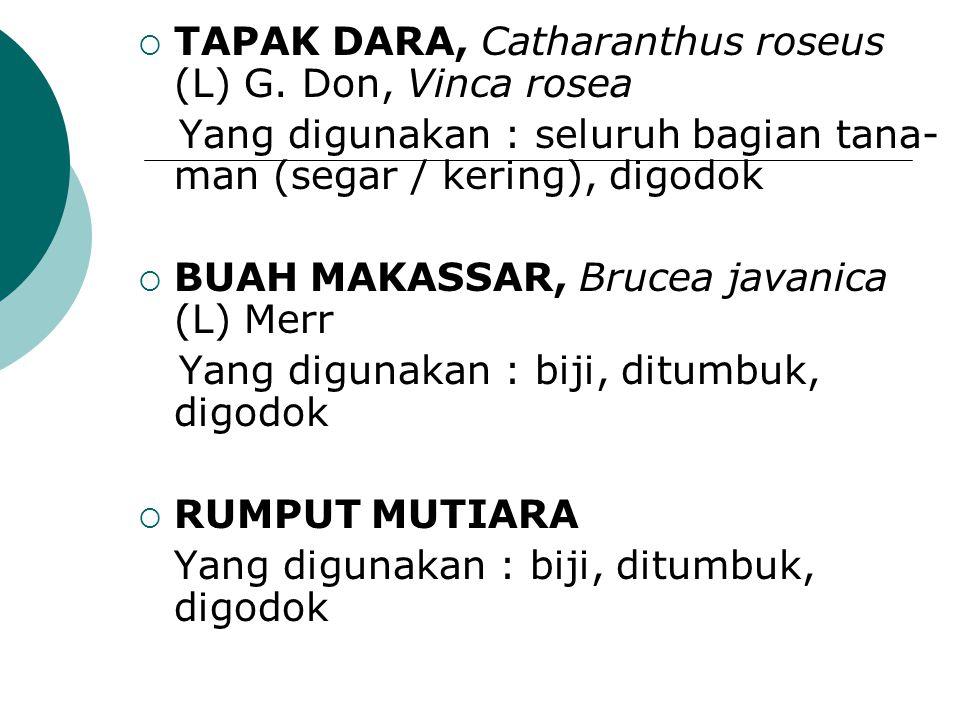 TAPAK DARA, Catharanthus roseus (L) G. Don, Vinca rosea Yang digunakan : seluruh bagian tana- man (segar / kering), digodok  BUAH MAKASSAR, Brucea