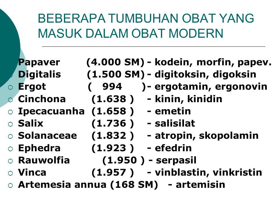 BEBERAPA TUMBUHAN OBAT YANG MASUK DALAM OBAT MODERN  Papaver (4.000 SM)- kodein, morfin, papev.  Digitalis (1.500 SM)- digitoksin, digoksin  Ergot