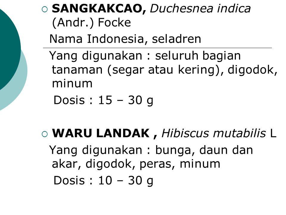  SANGKAKCAO, Duchesnea indica (Andr.) Focke Nama Indonesia, seladren Yang digunakan : seluruh bagian tanaman (segar atau kering), digodok, minum Dosi
