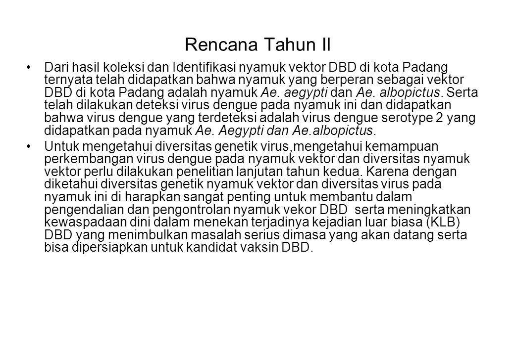 Rencana Tahun II Dari hasil koleksi dan Identifikasi nyamuk vektor DBD di kota Padang ternyata telah didapatkan bahwa nyamuk yang berperan sebagai vek
