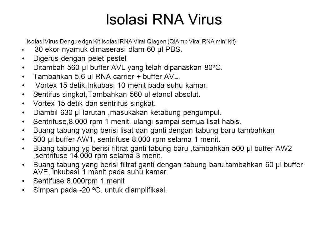 Isolasi RNA Virus Isolasi Virus Dengue dgn Kit Isolasi RNA Viral Qiagen (QiAmp Viral RNA mini kit} 30 ekor nyamuk dimaserasi dlam 60 μl PBS. Digerus d