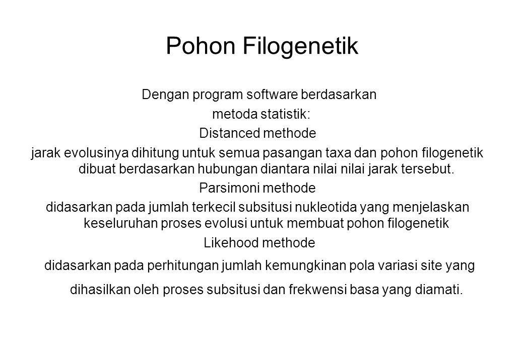 Pohon Filogenetik Dengan program software berdasarkan metoda statistik: Distanced methode jarak evolusinya dihitung untuk semua pasangan taxa dan poho