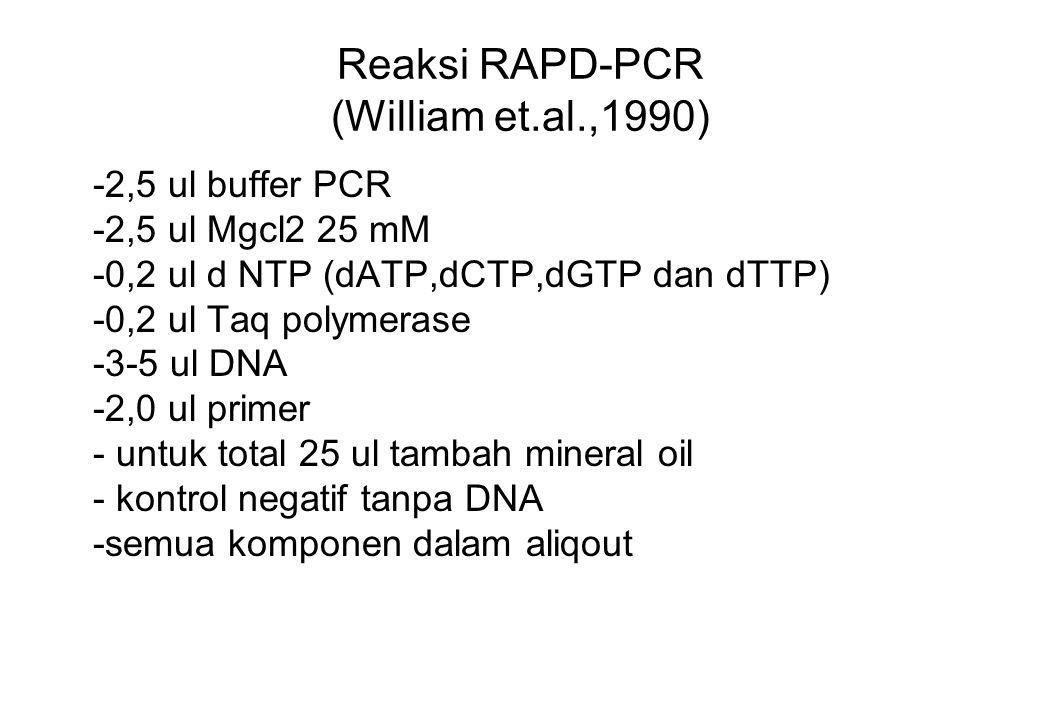 Reaksi RAPD-PCR (William et.al.,1990) -2,5 ul buffer PCR -2,5 ul Mgcl2 25 mM -0,2 ul d NTP (dATP,dCTP,dGTP dan dTTP) -0,2 ul Taq polymerase -3-5 ul DN