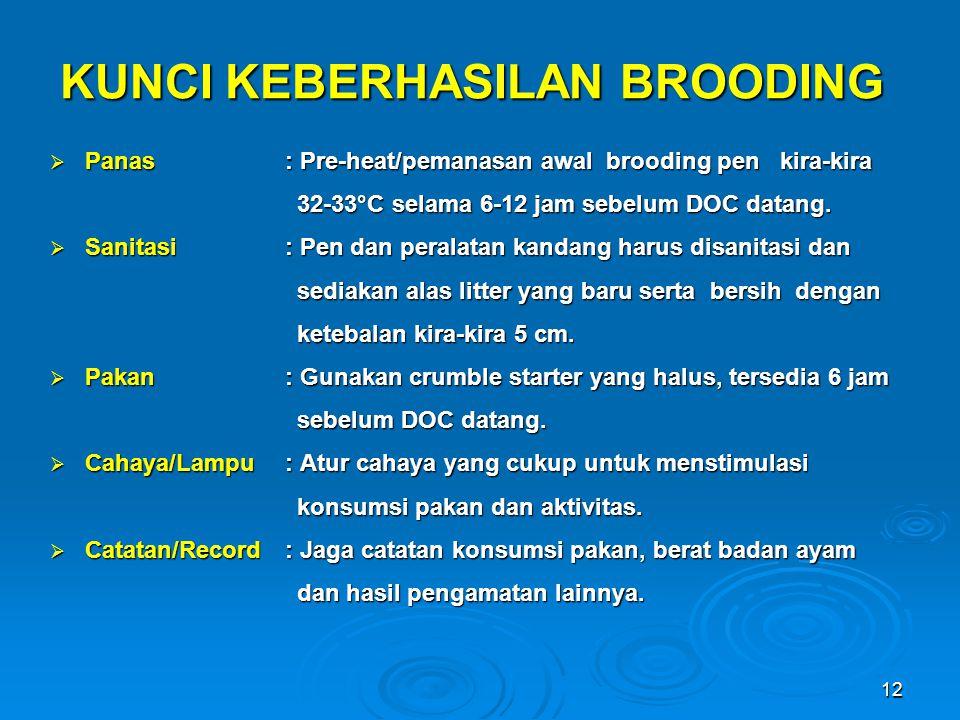 12 KUNCI KEBERHASILAN BROODING  Panas: Pre-heat/pemanasan awal brooding pen kira-kira 32-33°C selama 6-12 jam sebelum DOC datang. 32-33°C selama 6-12