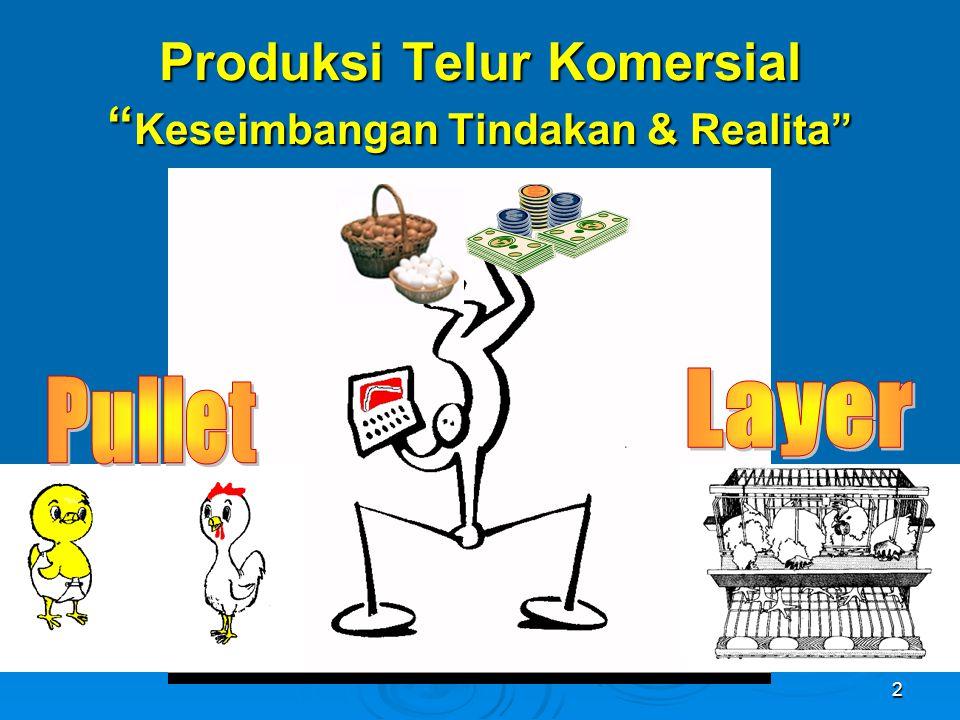 """2 Produksi Telur Komersial """" Keseimbangan Tindakan & Realita"""""""