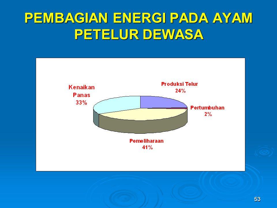 53 PEMBAGIAN ENERGI PADA AYAM PETELUR DEWASA