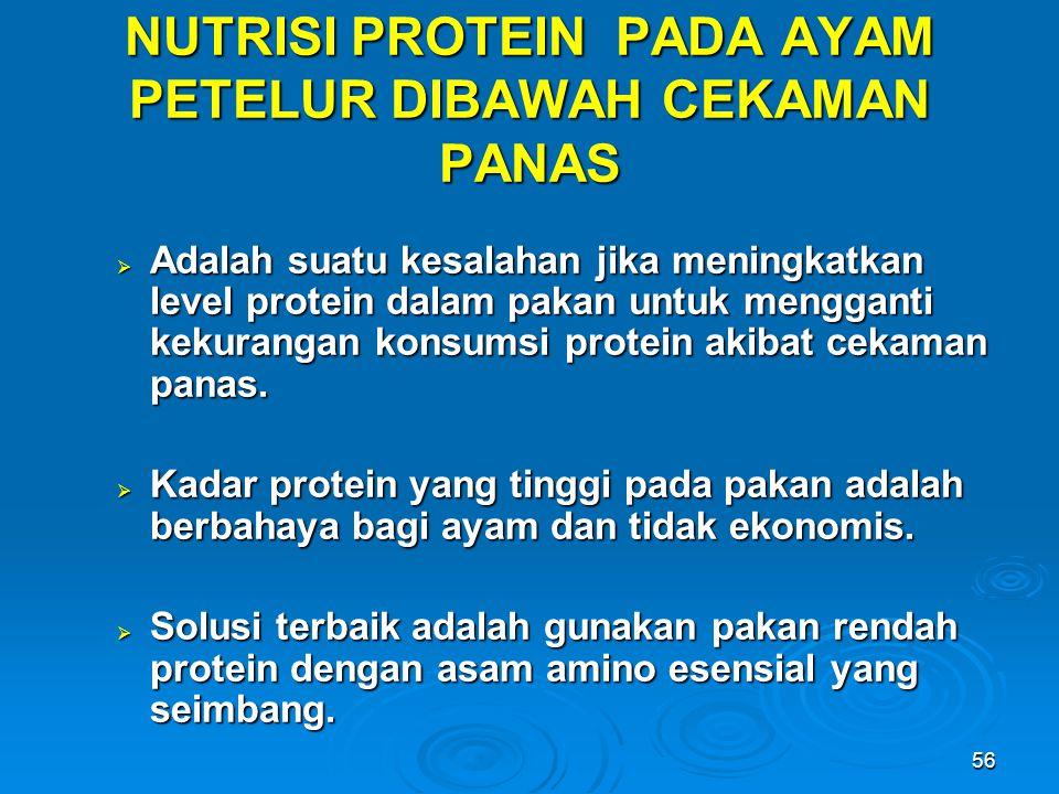 56 NUTRISI PROTEIN PADA AYAM PETELUR DIBAWAH CEKAMAN PANAS  Adalah suatu kesalahan jika meningkatkan level protein dalam pakan untuk mengganti kekura