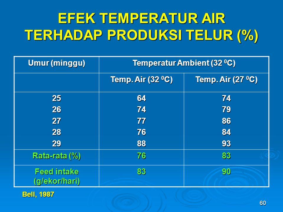 60 EFEK TEMPERATUR AIR TERHADAP PRODUKSI TELUR (%) Umur (minggu) Temperatur Ambient (32 0 C) Temp. Air (32 0 C) Temp. Air (27 0 C) 2526272829647477768
