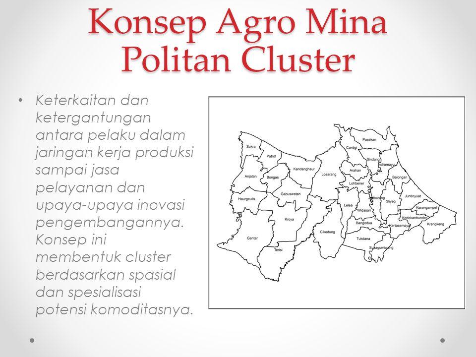 Konsep Agro Mina Politan Cluster Keterkaitan dan ketergantungan antara pelaku dalam jaringan kerja produksi sampai jasa pelayanan dan upaya-upaya inov
