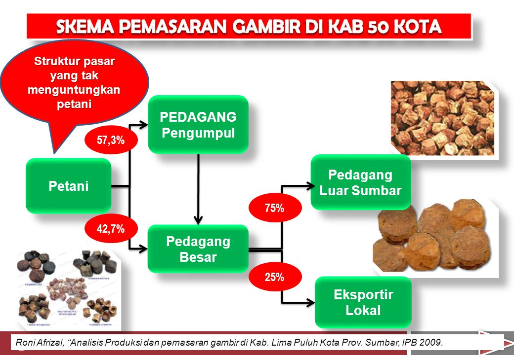 "12 PEDAGANG Pengumpul Pedagang Besar Petani Pedagang Luar Sumbar Eksportir Lokal 57,3% 42,7% 75% 25% Roni Afrizal, ""Analisis Produksi dan pemasaran ga"