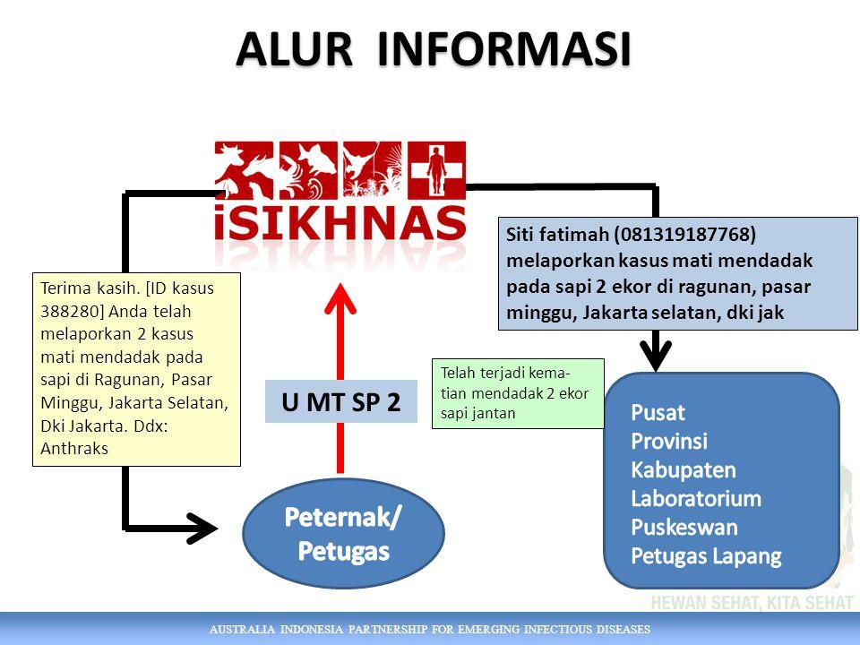 AUSTRALIA INDONESIA PARTNERSHIP FOR EMERGING INFECTIOUS DISEASES ALUR INFORMASI U MT SP 2 Telah terjadi kema- tian mendadak 2 ekor sapi jantan Terima