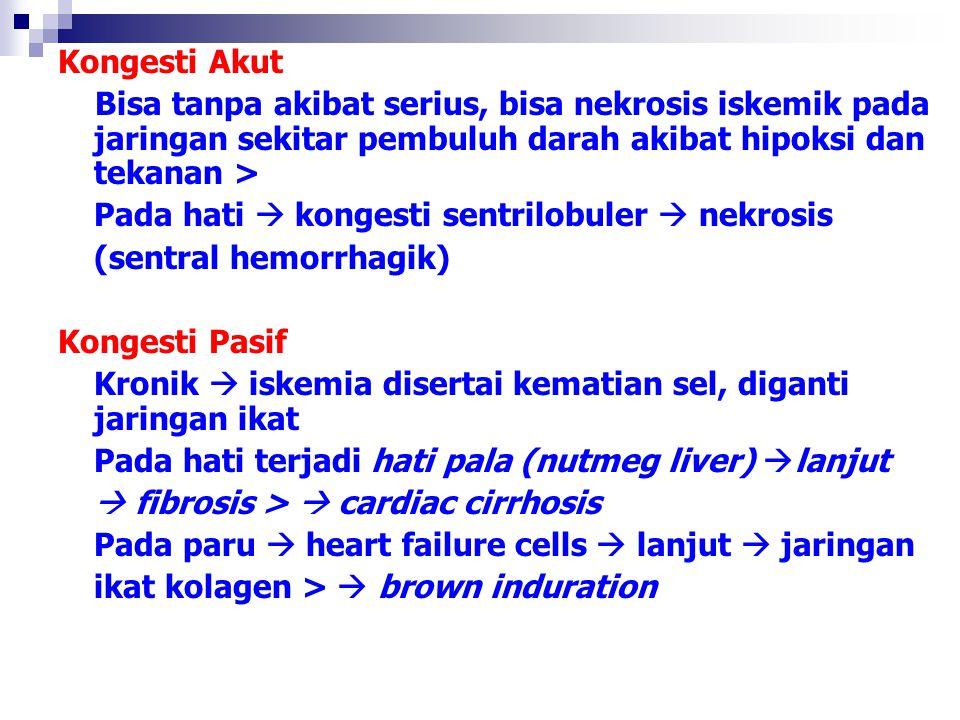 HEMORRHAGIA Keluarnya darah dari pembuluh darah/jantung o.k trauma, spontan (mis.hipertensi), lemahnya dinding pembuluh darah (mis.defisiensi vit C), kelainan trombosit (mis idiopatik trombositopenia purpura) Klinik : petechiae, purpura, echymoses, hematoma, mengisi rongga (hematotoraks, hematosalping) hematuri, hematemesis, hemoptoe, epistaksis