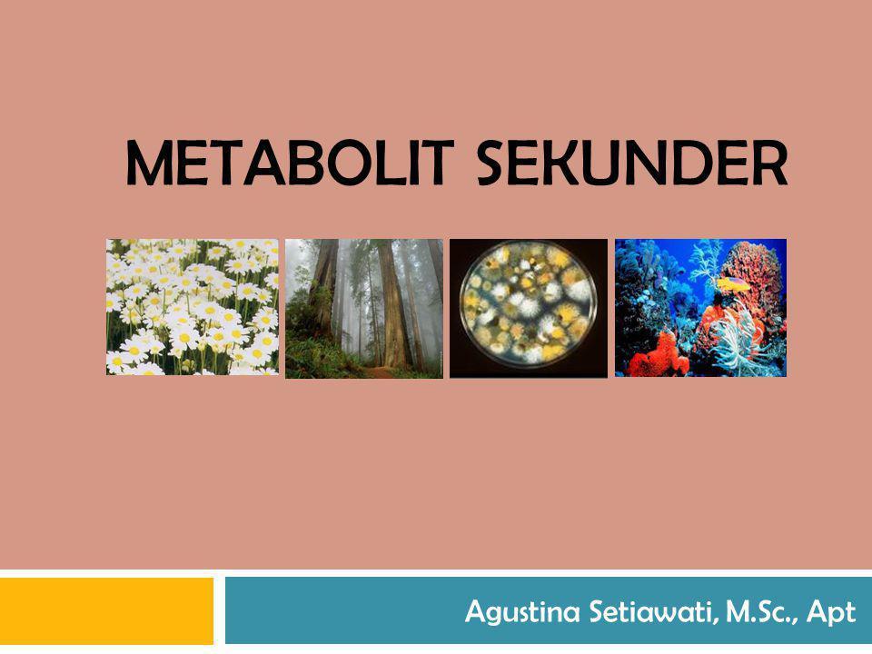 METABOLIT SEKUNDER Agustina Setiawati, M.Sc., Apt