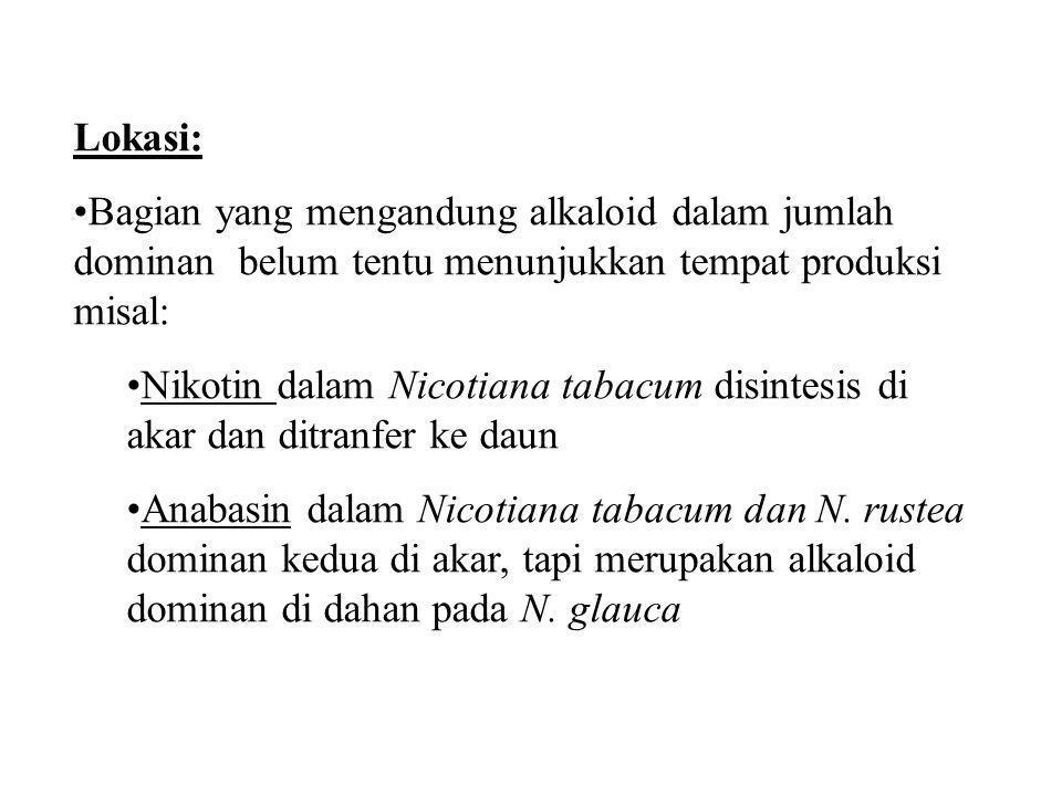 Lokasi: Bagian yang mengandung alkaloid dalam jumlah dominan belum tentu menunjukkan tempat produksi misal: Nikotin dalam Nicotiana tabacum disintesis